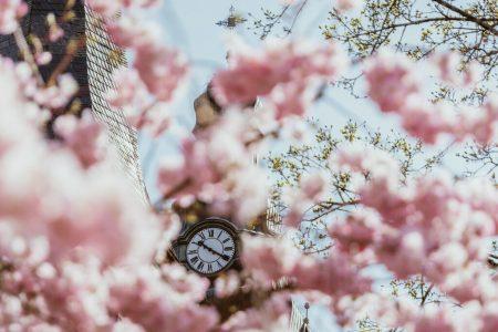 часы в цветах