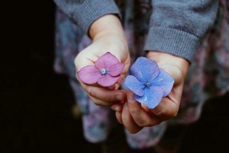 цветочки голубой и розовый